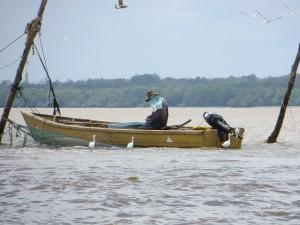 Lokale visser